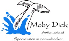 Amusing moment moby dick noordwijk opinion you